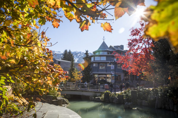 Beautiful foliage on Whistler Village Stroll. PC: Justa Jeskova