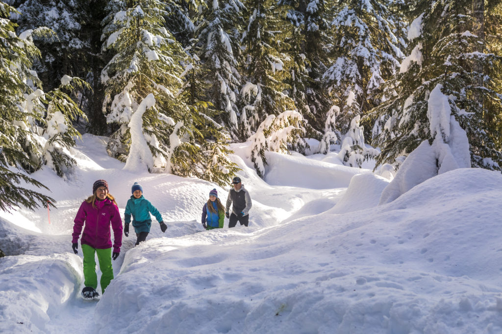 You might want to try something a bit more leisurely like winter hiking in Whistler.  PC: Tourism Whistler/Justa Jeskova