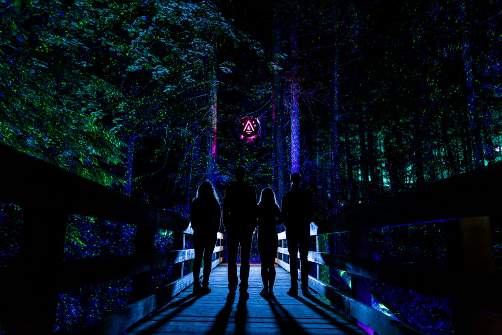 The hugely popular multimedia night walk embarks on its first-ever winter experience this year. PC: Vallea Lumina