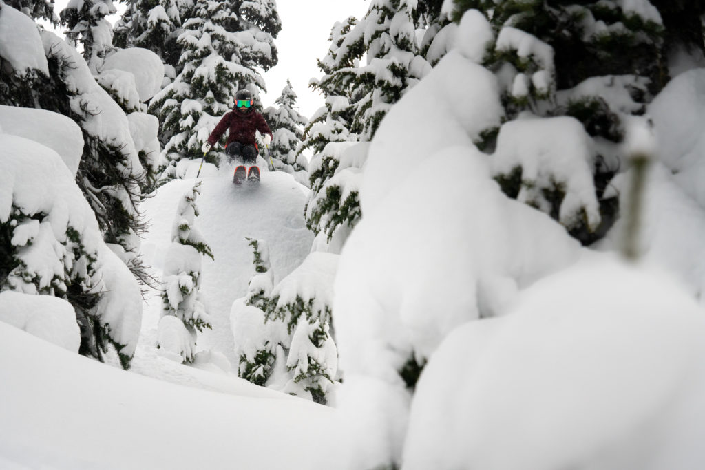 Quite often happened-upon rather than sought-out, Gnarly Knots is a brief  but exciting tree run. PC: Tourism Whistler/Vince Emond