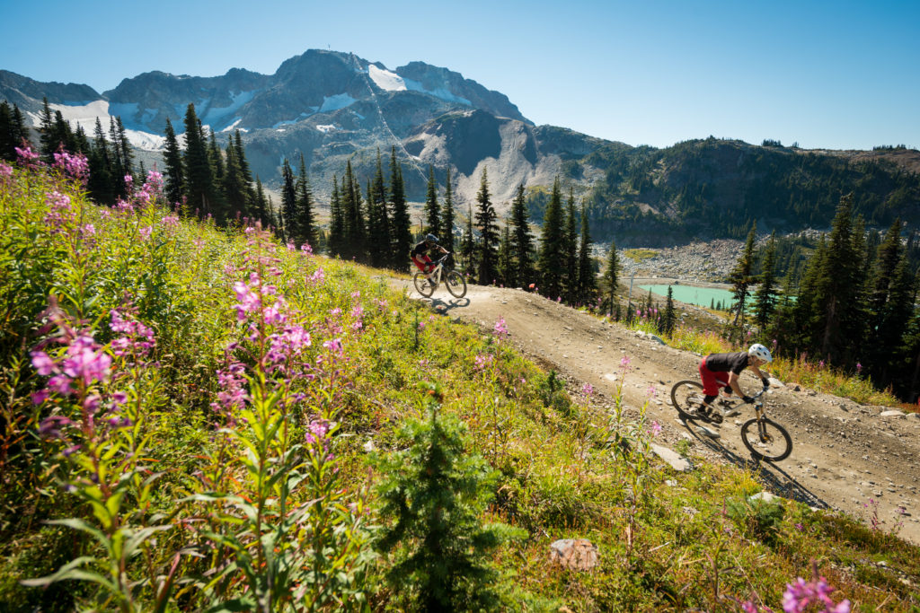 Mountain biking in the Whistler Bike Park. PC: Tourism Whistler/Mike Crane