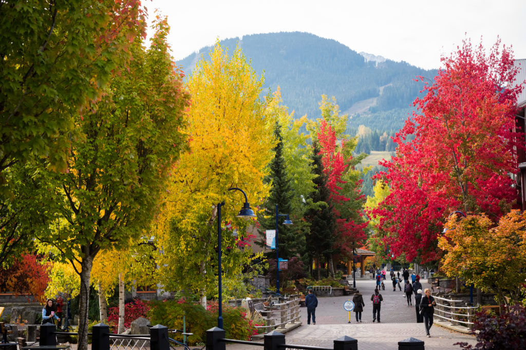 Whistler in fall is simply beautiful. PC: Mike Crane Photography